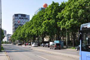 Rosenheimer Straße, Blick stadteinwärts an der Kreuzung zur Anzinger Straße