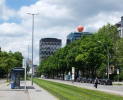 Haltestelle Anzinger Straße, mit begrüntem Tramgleis