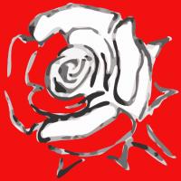 Stilisierte weiße Rose auf rotem Grund